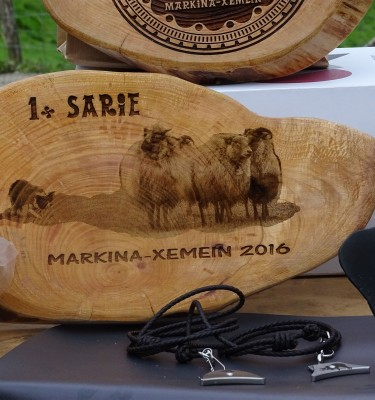 Custom Awards | 1 go Sarie - Sheep | Markina Xemein 2016